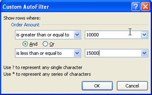 Filter In Excel AutoFilter