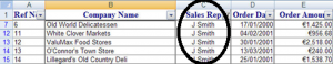 Filtering in Excel_CompanyName